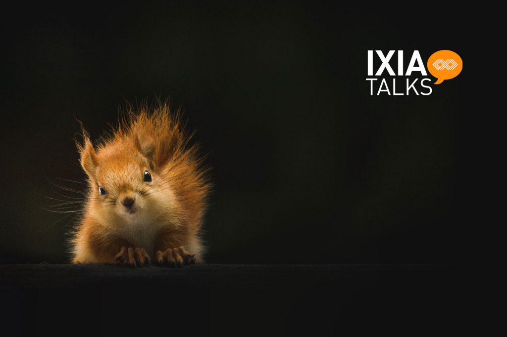 a squirrel with a logo