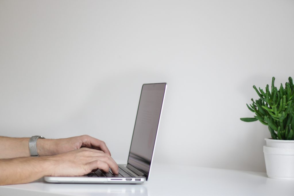 Person typing on laptop with plant.